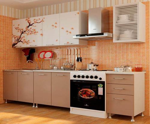 Кухня с фотопечатью-053