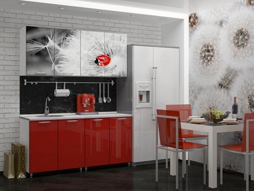 Кухня с фотопечатью-029
