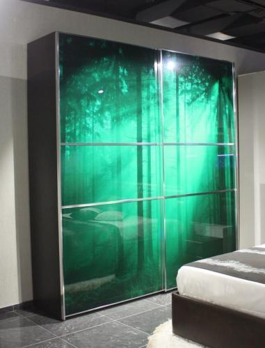 Шкаф-купе-Д21 (фасад: стекло с фотопечатью)